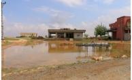 Harran'da şiddetli yağış taşkına neden oldu