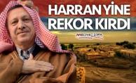 Erdoğan'a Şanlıurfa'da en büyük destek Harran'dan