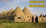 ''Oy rekoru Sincik'te değil, Harran'da''