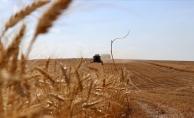 Çiftçilere Yönelik Bilgilendirme Toplantısı Yapıldı