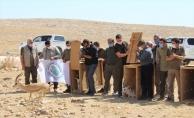 Şanlıurfa'da 5 Ceylan Doğaya Bırakıldı
