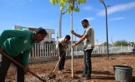 Haliliye'de Yeşilin Kalbi İçin Hummalı Çalışma