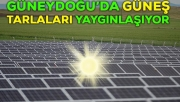 Güneydoğu Yıllık 3 Bin saat Güneşleniyor