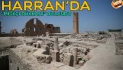 """Harran'da bin yıllık """"parfüm dükkanı"""" bulundu"""
