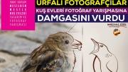 Kuş Evleri Fotoğraf Yarışması Sonuçları Açıklandı