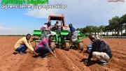 Somalili mühendisler modern tarımı Urfa'da öğreniyor