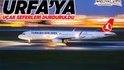 THY'ye Urfa'ya uçuşlarını durdurdu!