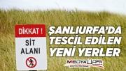 """Şanlıurfa'da bazı yerler """"sit alanı"""" ilan edildi"""