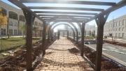 Şanlıurfa'da yeşil koridor projesinde sona gelindi