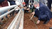 Büyükşehir'den yeni sera tesisi