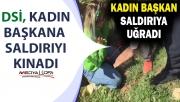 DSİ'den Urfa'daki saldırıya kınama