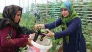 Türk ve Suriyeli Kadınlar Güçlerini Birleştirdi